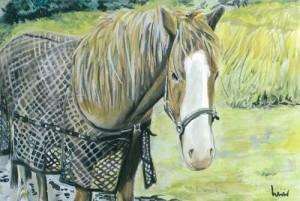 "Horse 23x15cm 9""x6"" Print £20 Original Painting Sold"