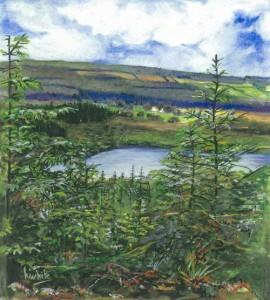 """Lough Naveane Lettercran 27x30cm 10.5""""x11.75"""" Print £35 Original Painting £175"""