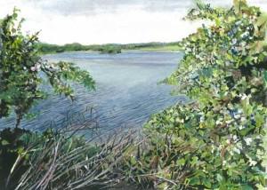 "Castle Archdale Lake Scene 26.5x23cm 10.5""x9"" Print £30 Original Painting £150"