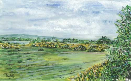 """Lough Erne View with Gorse 28.5x18cm 11.25""""x7""""  Print £22 Original Painting £110"""