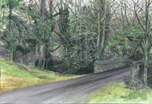 "Snowdrops at Necarne 38x26cm 15x10.25"" Print £50 Original painting £200"