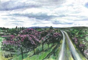 """Donegal Rhododendrons 27.5x19cm 10.75""""x7.5"""" Print £30 Original Painting £150"""